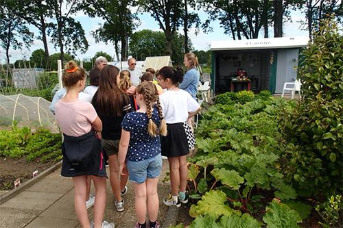 Basisschoolleerlingen bezoeken volkstuin